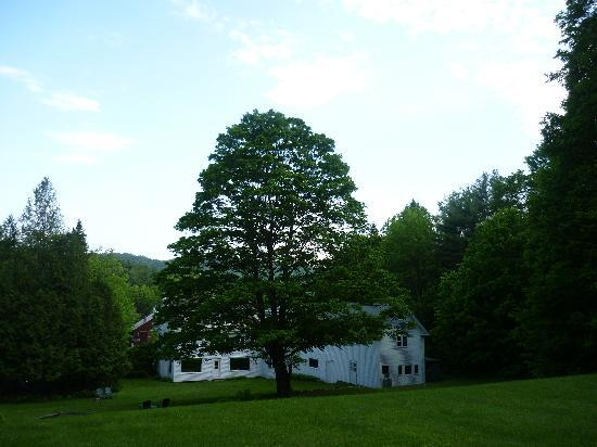 Inn on Golden Pond: back view from edge of lawn