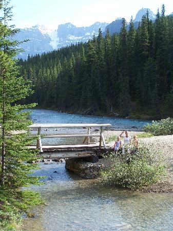 Waterfowl Lake Campground: walking bridge in campground