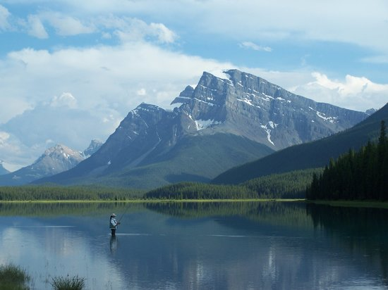Waterfowl Lake Campground: Beautiful Waterfowl Lake