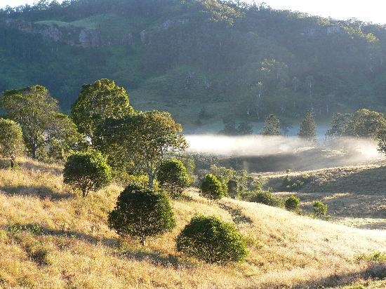 Worendo Cottages : Morning dew over the hills in the morning