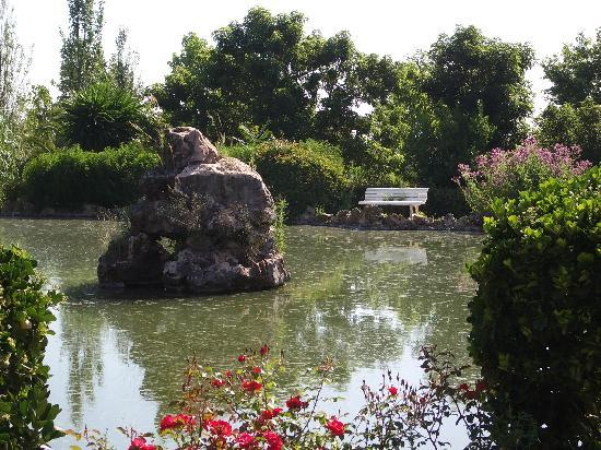 Hotel Sa Torre de Santa Eugenia: The lake