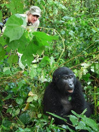 Bwindi Impenetrable National Park: Peek a boo