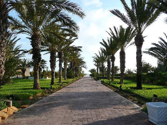 Hotel Palace Royal Garden: Allée menant à la plage