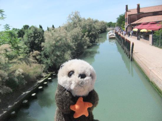 Isla de Torcello: The canal and pathway on Torcello