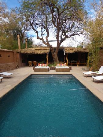 Awasi Atacama - Relais & Chateaux: la piscine