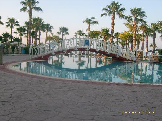 Marlita Beach Hotel Apartments: Excellent Pool!