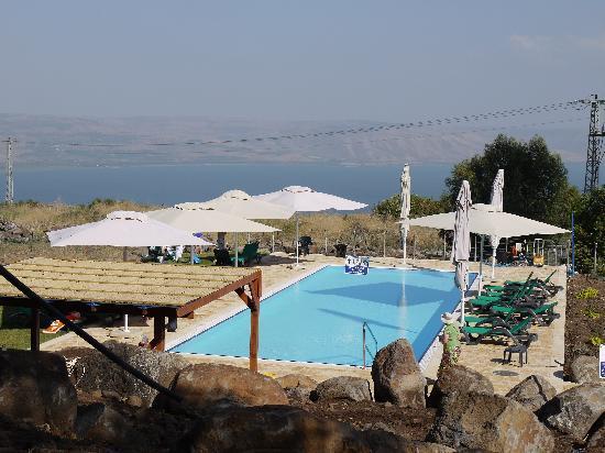 ורד הגליל, ישראל: Swimming Pool Terrace