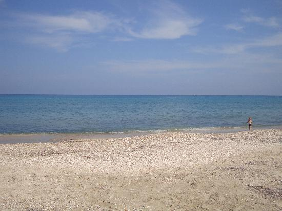 Almyros Natura Hotel - CYPROTEL: the pebble beach