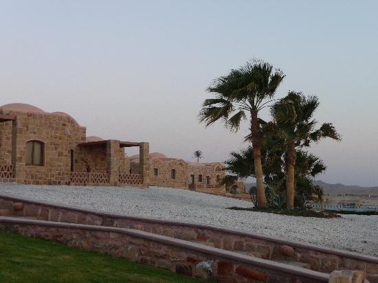 Mövenpick Resort El Quseir: le camere