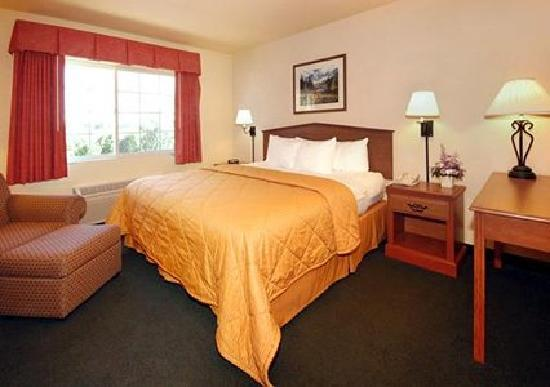 Comfort Inn and Suites Tualatin - Portland South張圖片