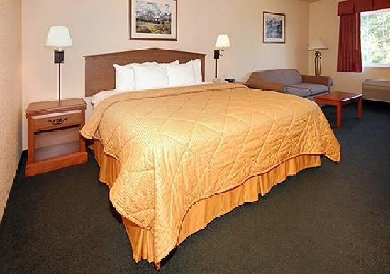 Comfort Inn and Suites Tualatin - Portland South: King Bed with pull-out sleeper sofa