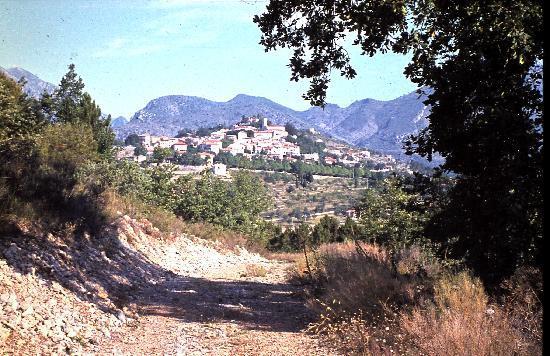 Le chemin du Vignal derrière la Vigneraie avant l'urbanisation galopante