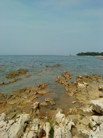 Sol Stella Apartments: Steinstrand (perfekt zum Schnorcheln) Sand im Meer auch vorhanden!