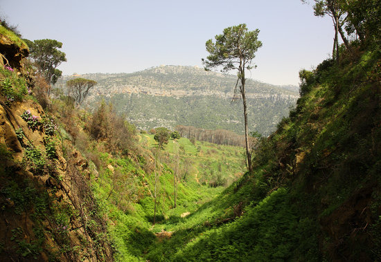 Beiteddine, Lebanon: Views from the garden