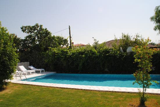 Alura Boutique Hotel: the pool
