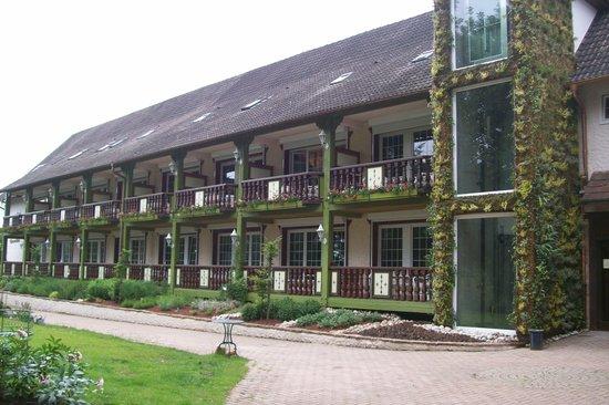 Hostellerie La Cheneaudiere - Relais & Chateaux: terrasses avec jardin des plantes aromatiques