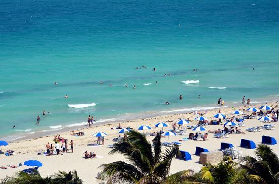 Holiday Inn Miami Beach View Of The From Room