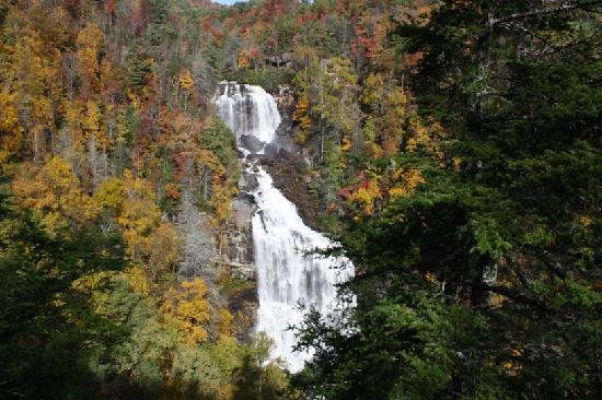 Whitewater Falls - about 1 1/2 hours from Asheville