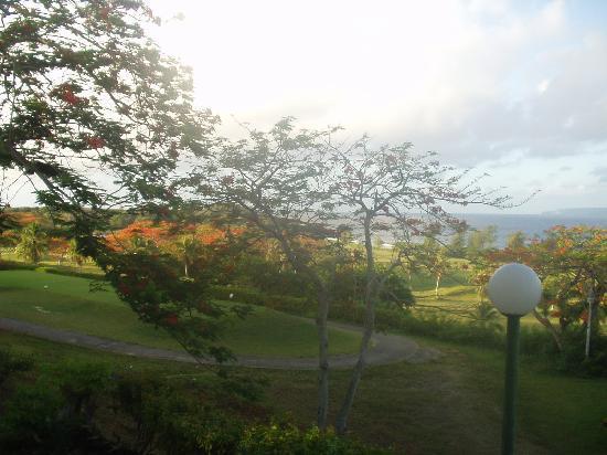 Coral Ocean Golf Resort : お部屋からの美しい景色