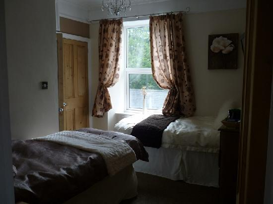 Loscombe House Bed and Breakfast: Twin Room