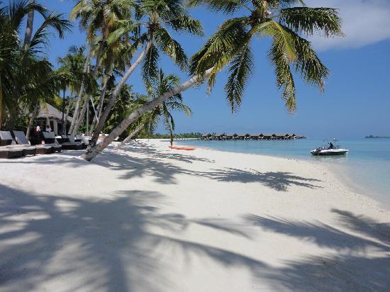 Shangri-La's Villingili Resort and Spa Maldives: Paradise