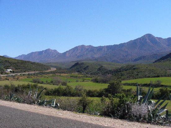 Oudtshoorn Ballooning: Swartberg Mountains