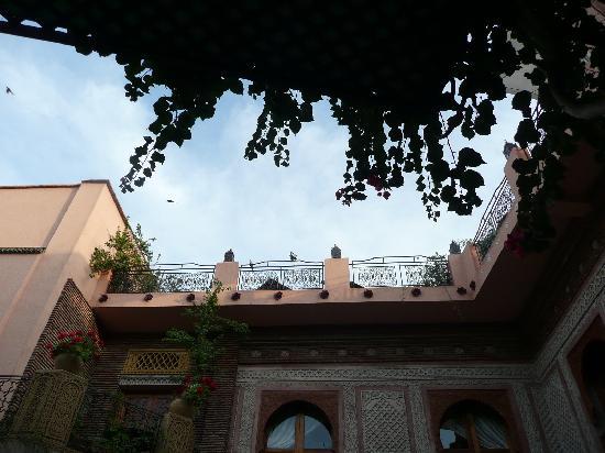 Palais Sebban: terrace