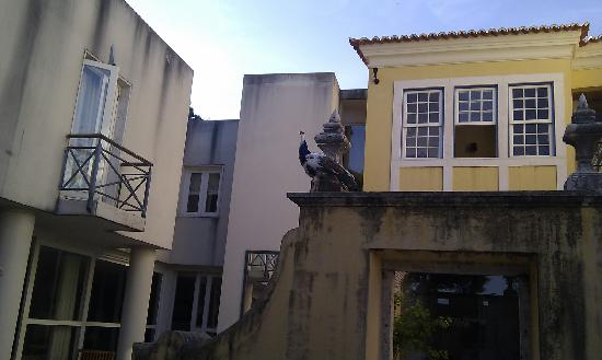 Solar Do Castelo: courtyard