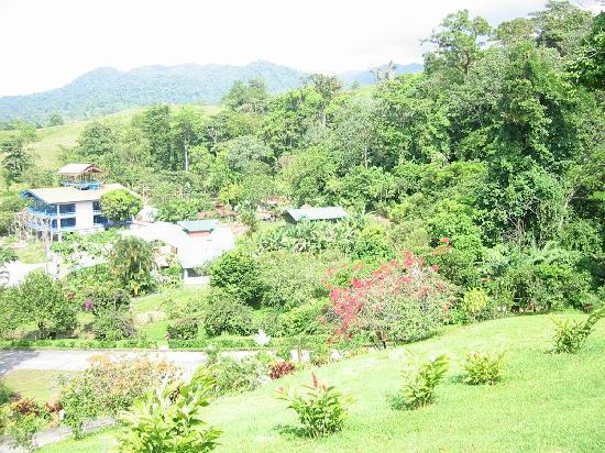 Arenal Vista Lodge: surrounding area