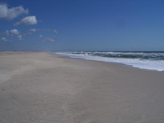 Treasure Beach RV Park and Campground: Assateague Island