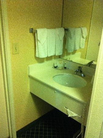 Fairfield Inn Charlotte Mooresville/Lake Norman: Sink Area