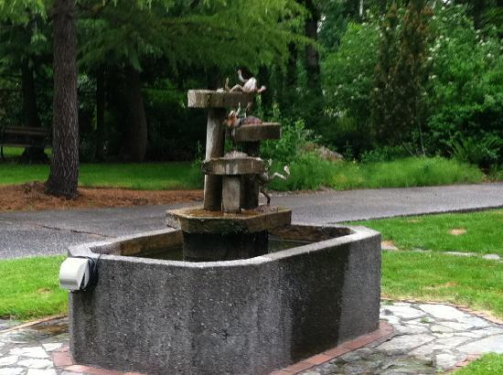 Anderson Creek Lodge: fountain out front