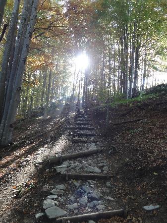 Weissbad, Switzerland: Aufstieg zur Ebenalp / Aescher