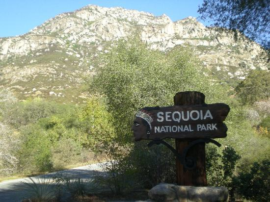 Exeter, Californië: Il Sequoia National Park