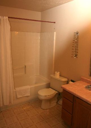 Terrace Brook Lodge: The bathroom
