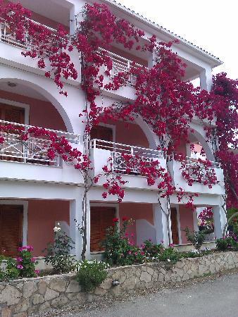 ΜΠΙΤΖΑΡΟ ΠΑΛΛΑΣ: Hotel again
