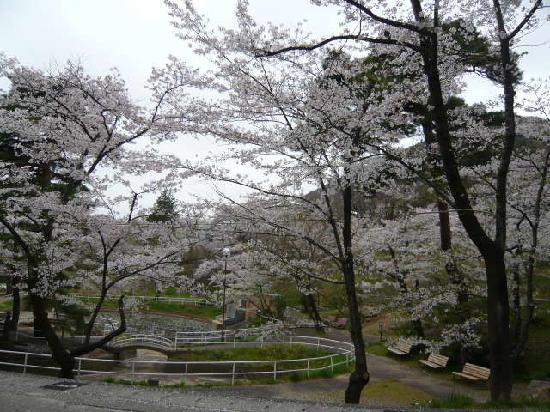 Fukushima, Jepang: 駒山公園