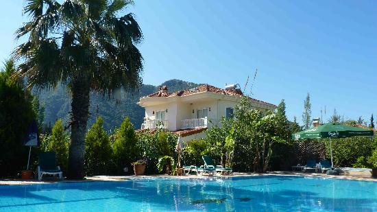 Dalyan Garden Pension: the pool!