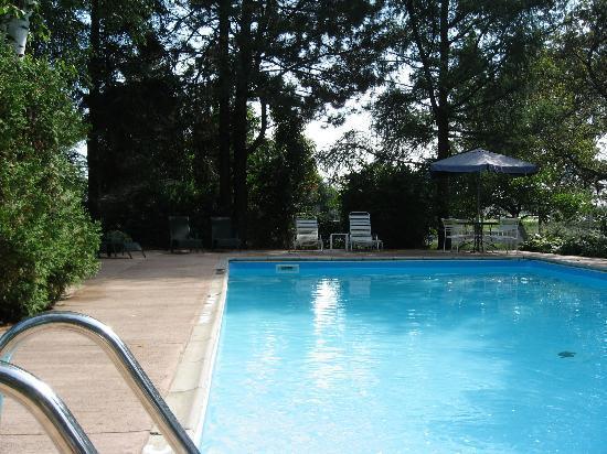 Suburban Motel: Pool