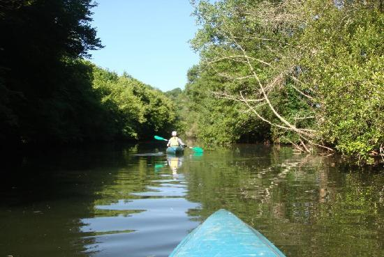Le Coligny: Canoe on the Dronne