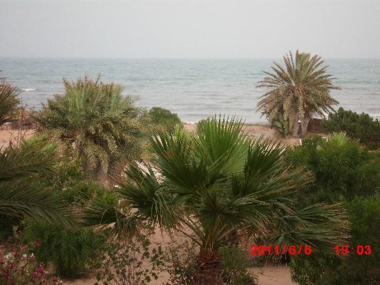 Hotel Golf Beach & Spa: vue de la chambre