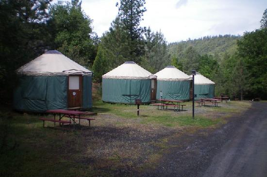Yosemite Pines RV Resort and Family Lodging: Yurts