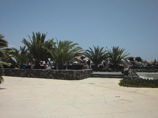 Sandos San Blas Nature Resort & Golf: Behind Main Pool