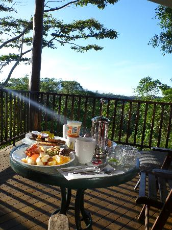 Rose Gums Wilderness Retreat: Eating breakfast on the deck of our treehouse