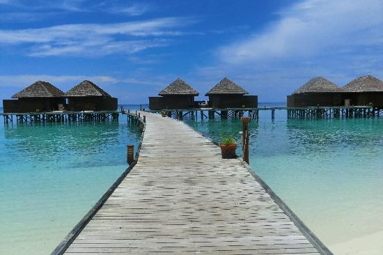 Veligandu Island Resort & Spa: Veligandu !
