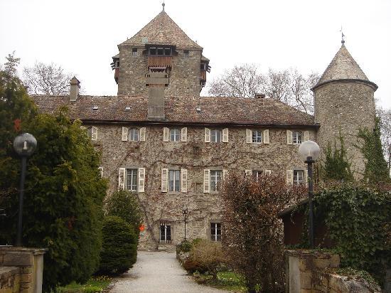Chateau de Coudree: .