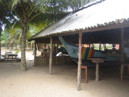 Green Turtle Lodge: Bar and restaurant