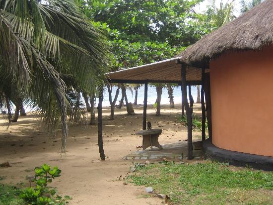 Green Turtle Lodge: Rooms