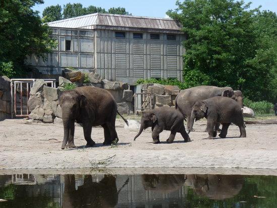 Tierpark