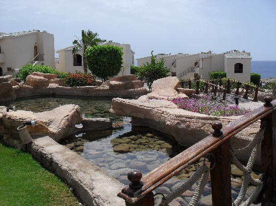 Island View Resort: One view of the Gardens